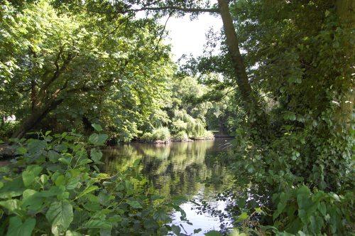Belair Lake