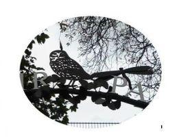 owl + dragonfly logo