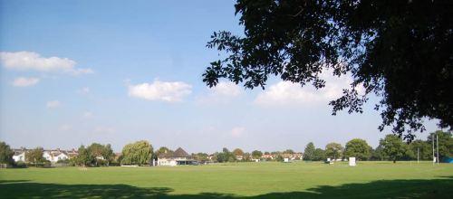 Turney Road field