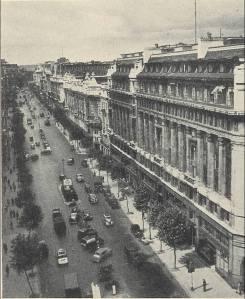 tree street old