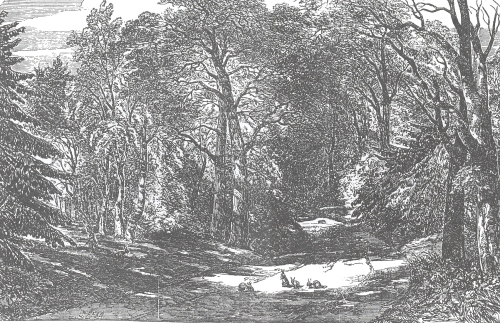 London Illustrated News, June 5, 1852